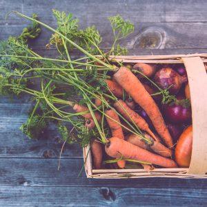los alimentos más sostenibles