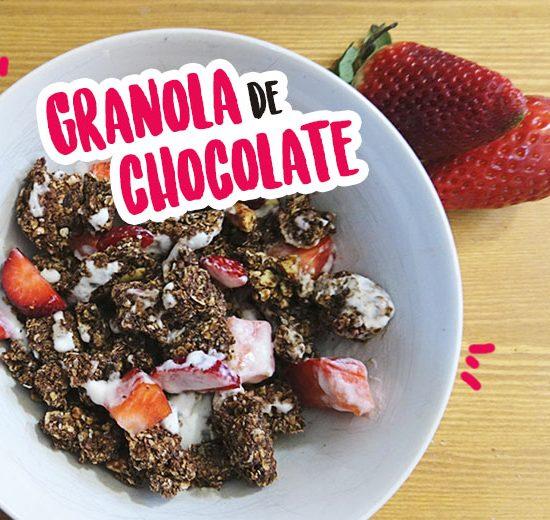 Granola con chocolate y sin gluten